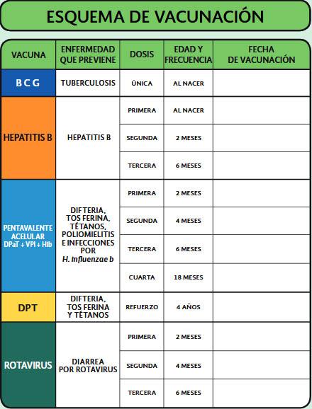 Cartilla de vacunación