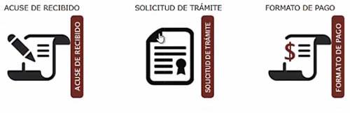 Impresión de documentos del reemplacamiento EDOMEX