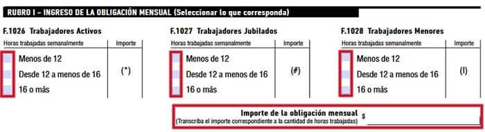Rubro 1 del formulario 102