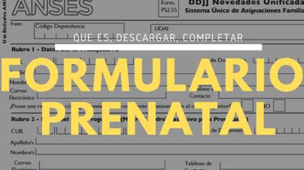 Formulario prenatal PS 2.55